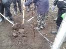 Первые шаги по созданию сада_4